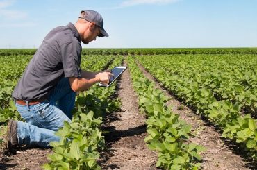 agriculture software systems